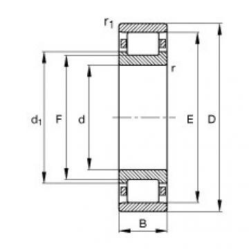 FAG محامل أسطوانية - N207-E-XL-TVP2