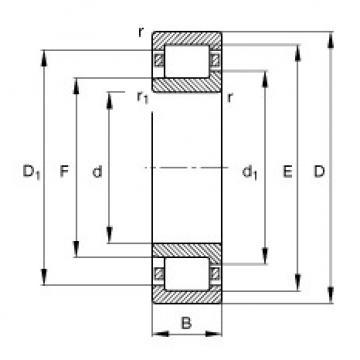 FAG محامل أسطوانية - NJ2206-E-XL-TVP2