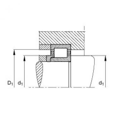 FAG محامل أسطوانية - NJ407-XL-M1 + HJ407