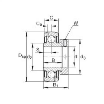 FAG شعاعي إدراج الكرات - GRA107-NPP-B-AS2/V