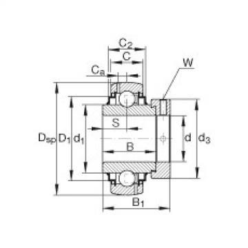 FAG شعاعي إدراج الكرات - G1107-KRR-B-AS2/V
