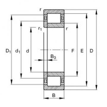 FAG محامل أسطوانية - NUP206-E-XL-TVP2