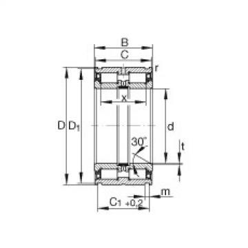 FAG محامل أسطوانية - SL045006-PP