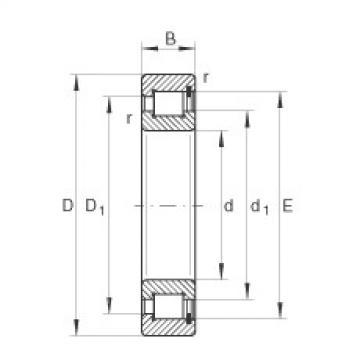 FAG محامل أسطوانية - SL182928-XL