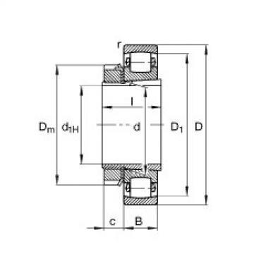 FAG برميل محامل - 20208-K-TVP-C3 + H208