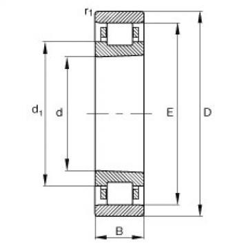 FAG محامل أسطوانية - N1006-K-M1-SP