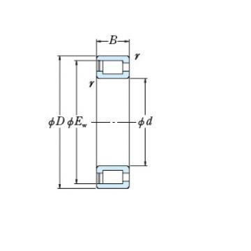 Bearing RS-5036