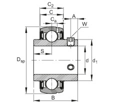 FAG شعاعي إدراج الكرات - SUC206
