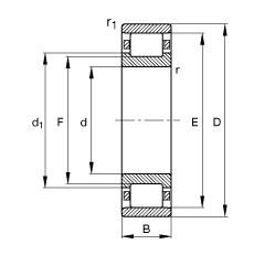FAG محامل أسطوانية - N206-E-XL-TVP2