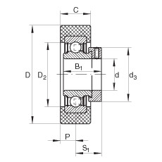 FAG شعاعي إدراج الكرات - RCSMA30/65-XL-FA106