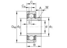 FAG شعاعي إدراج الكرات - GAY107-NPP-B-AS2/V