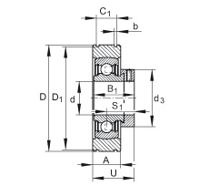 FAG شعاعي إدراج الكرات - PE35-XL