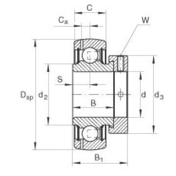FAG شعاعي إدراج الكرات - GRAE30-XL-NPP-B-FA125