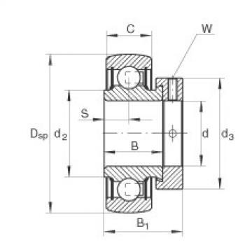 FAG شعاعي إدراج الكرات - RA104-206-NPP-B