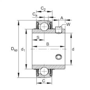 FAG شعاعي إدراج الكرات - UC206-19