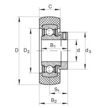 FAG شعاعي إدراج الكرات - RABRA30/62-XL-FA106