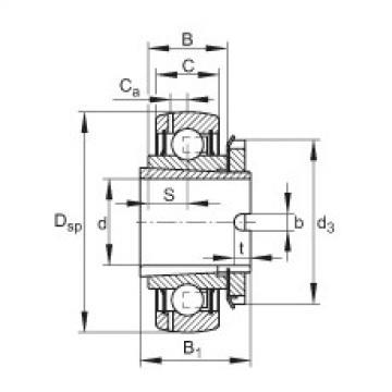FAG شعاعي إدراج الكرات - GSH30-XL-2RSR-B