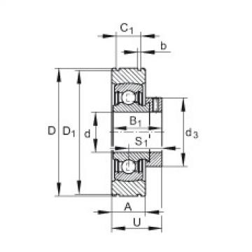 FAG شعاعي إدراج الكرات - PE30-XL